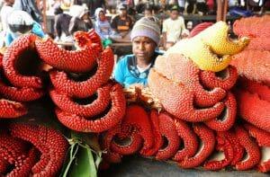 Kandungan obat sari buah merah papua