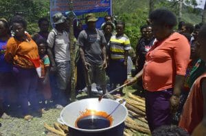 Manfaat khasiat buah merah papua