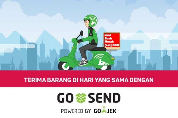 Buah Merah Papua di Jakarta Kirim Dengan Gojek