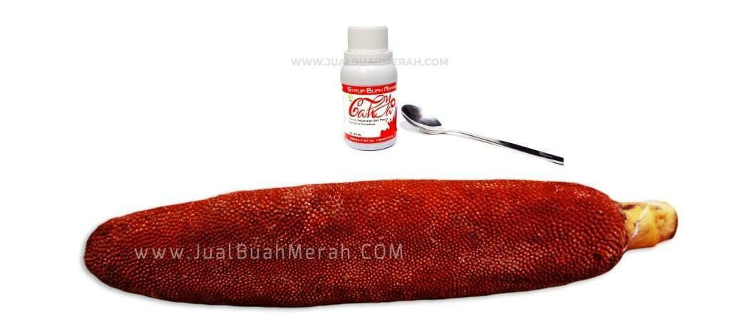 Jual Buah Merah Di Jakarta