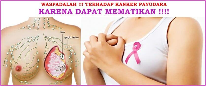 buah merah papua 500 ml obat kanker payudara